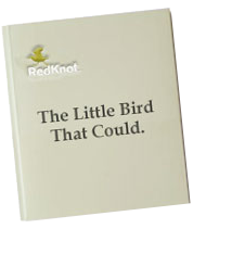 The Little Bird That Could